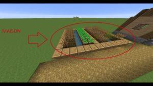 comment vivre sous un champ Minecraft